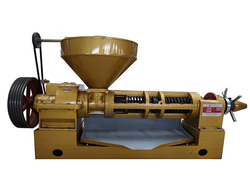 jintai mechanical tung seed oil press machine screw oil