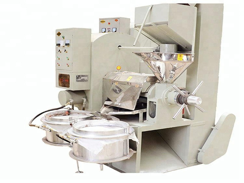 china 2020 hot sale edible oil screw oil press machine